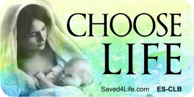 Choose Life (MomBabe) 1x2 Envelope Sticker
